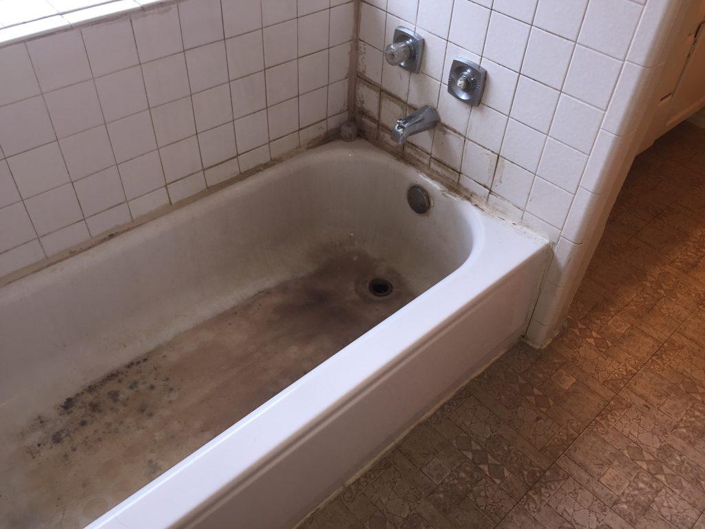 Master Tub Area